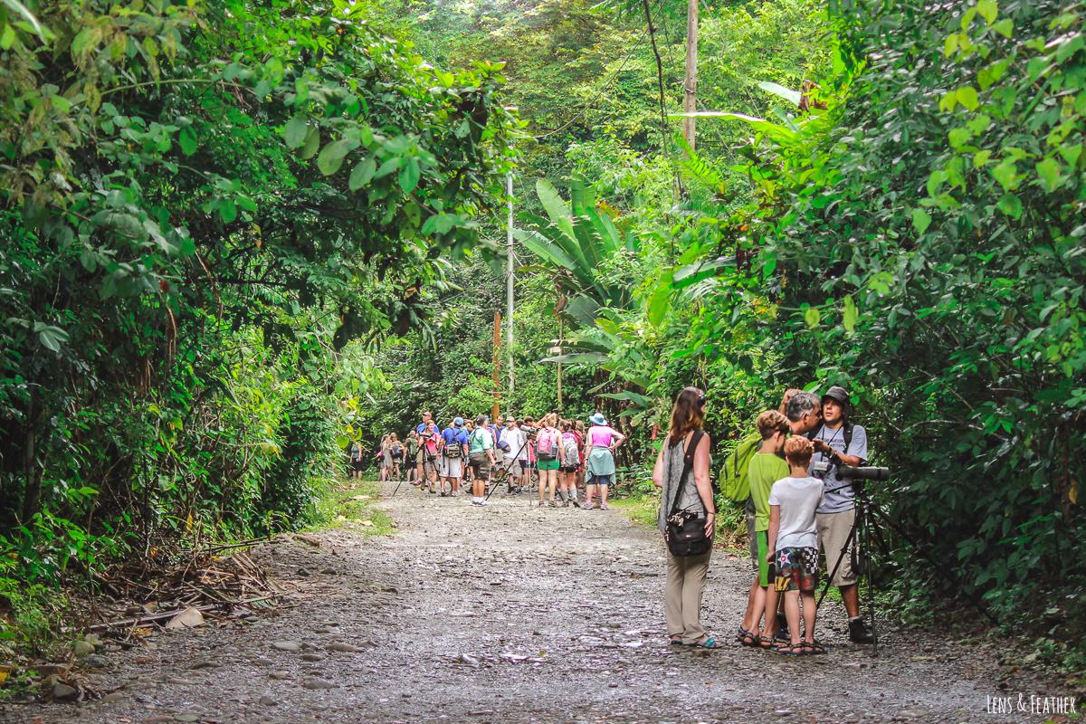 Besuchermassen im Nationalpark Manuel Antonio