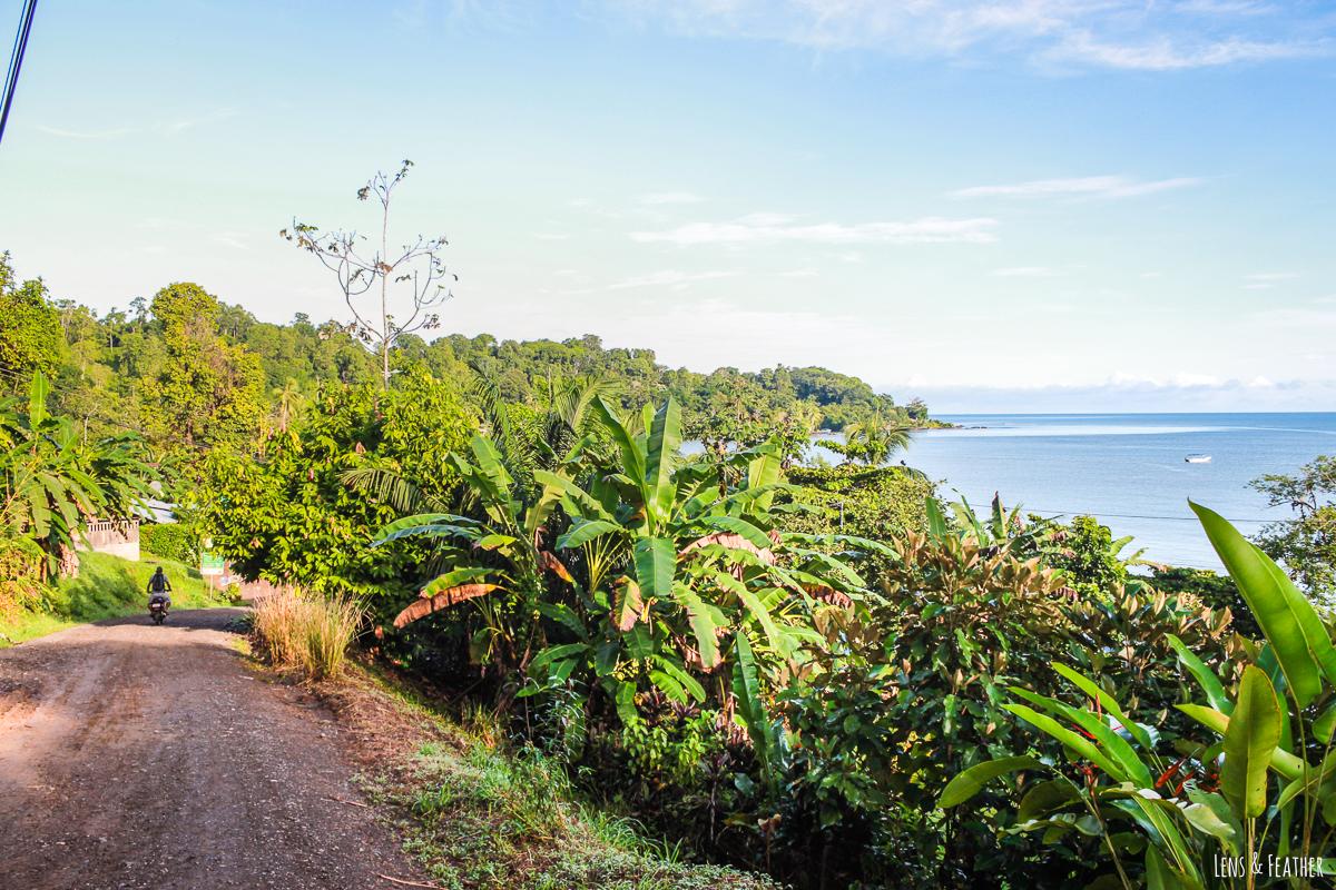 Aussicht über Drake Bay