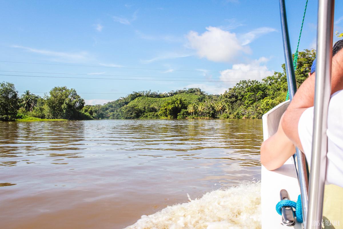 Bootsfahrt über den Rio Sierpe Costa Rica