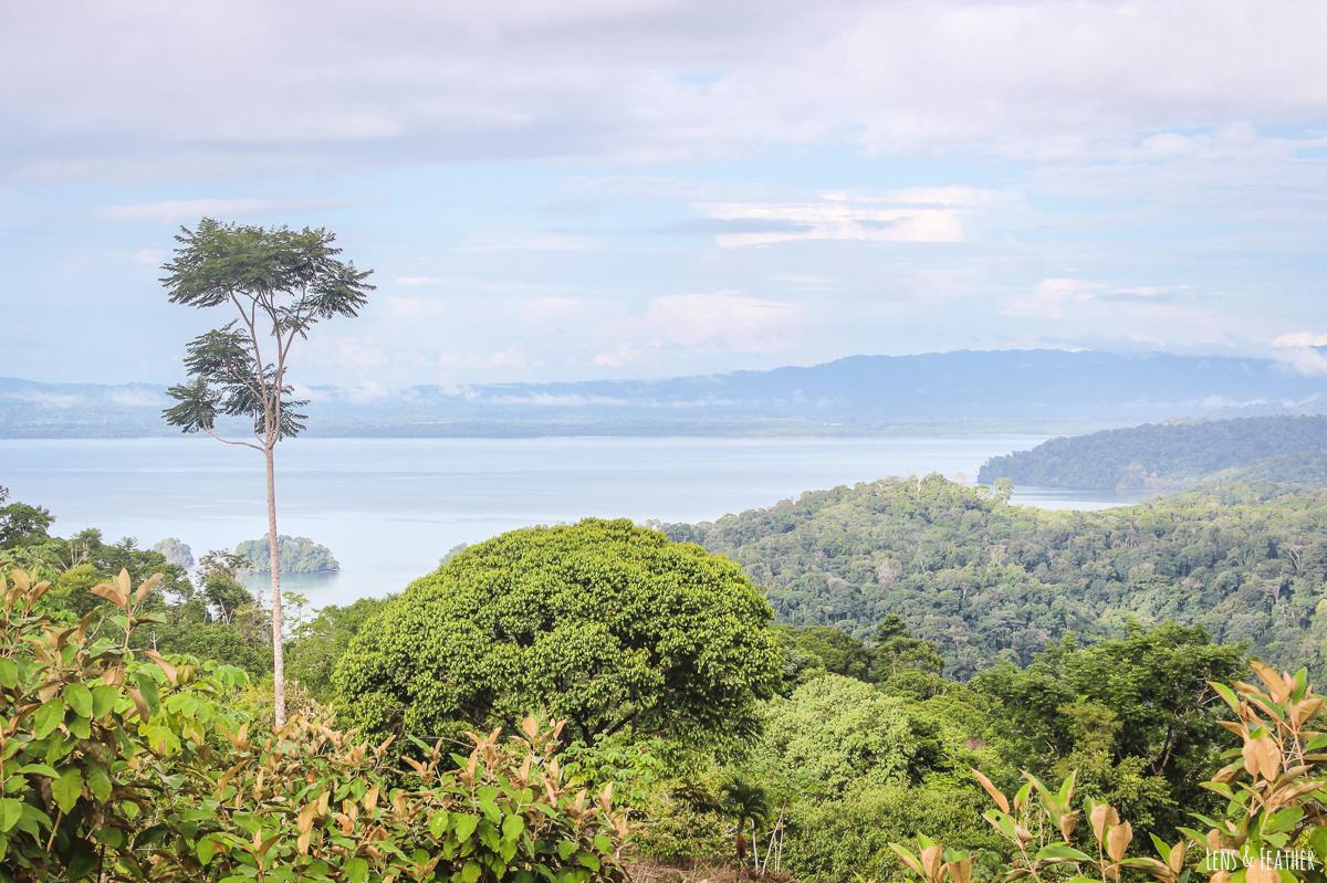 Der Golfo Dulce in Costa Rica