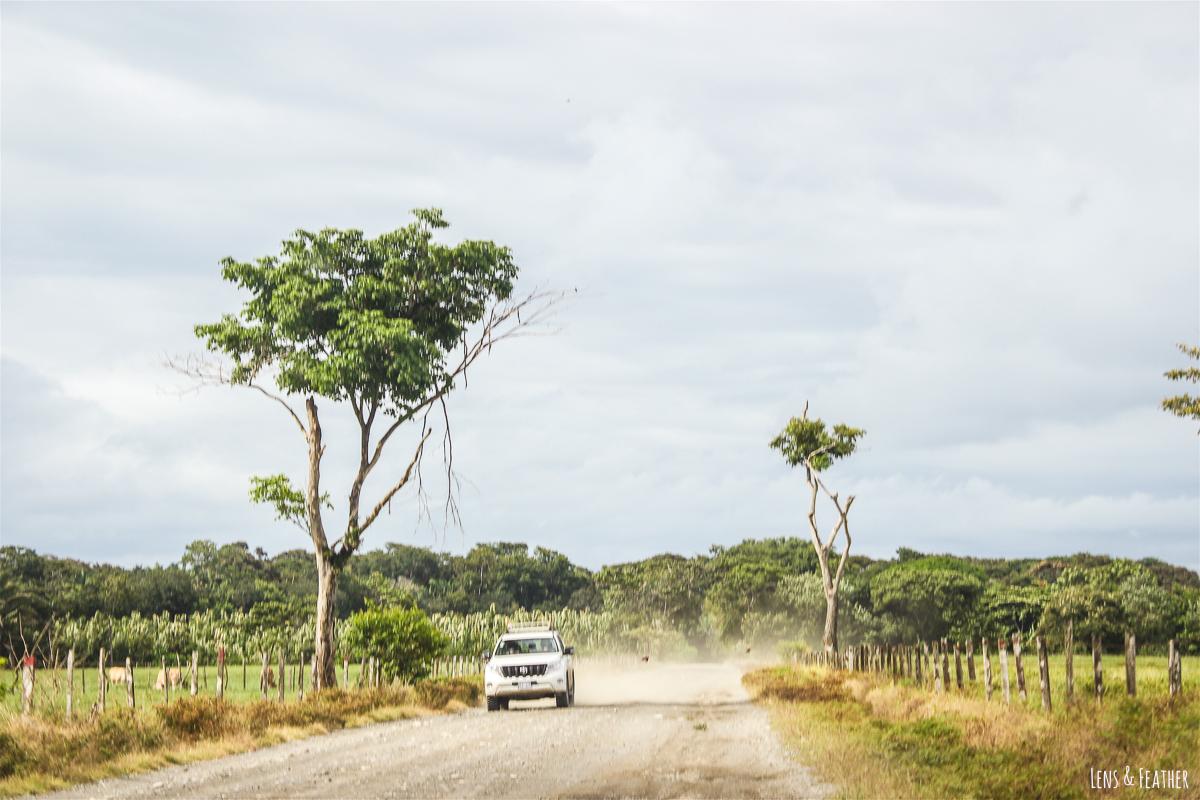 Straße nach Cabo Matapalo in Costa Rica