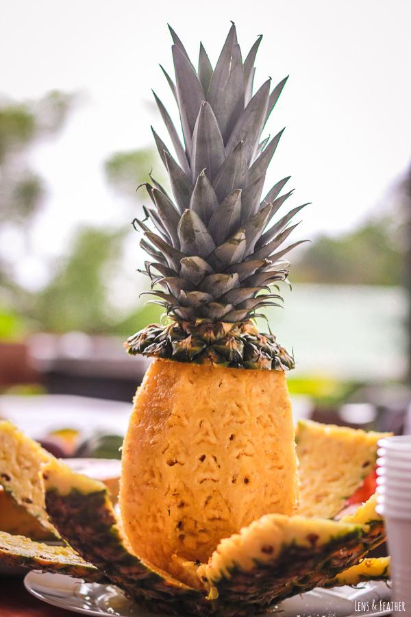 Frische Ananas in Costa Rica