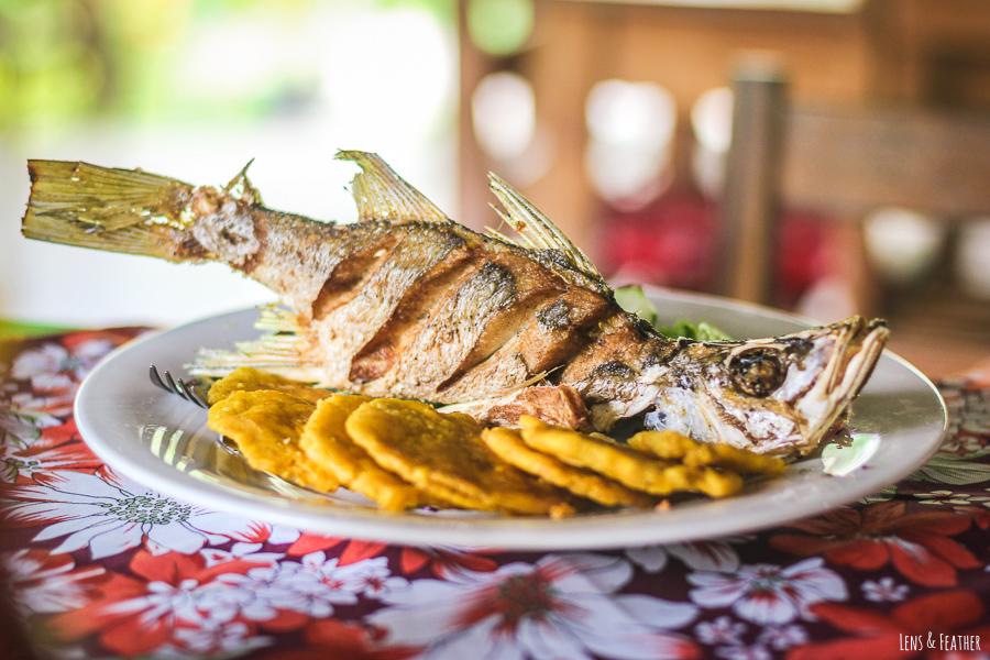 Fisch mit Patacones in Costa Rica