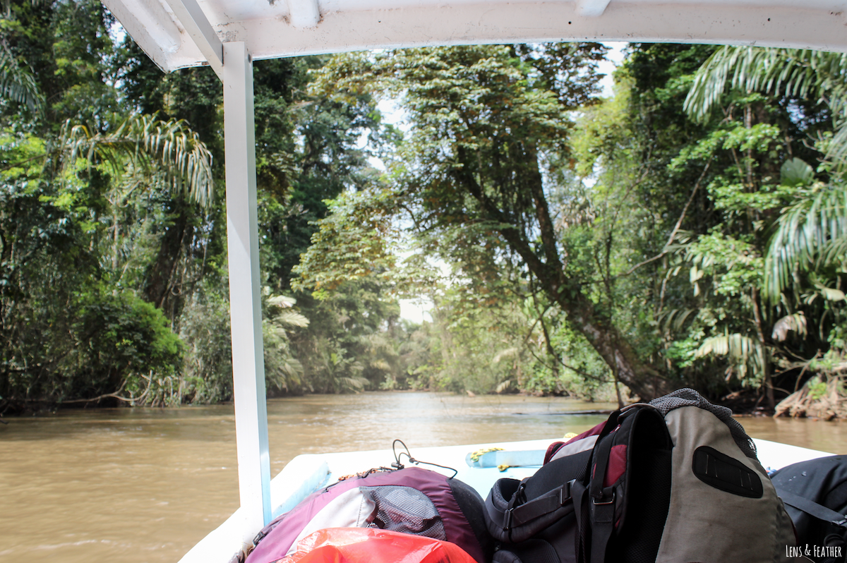 Bootsfahrt nach Tortuguero Costa Rica