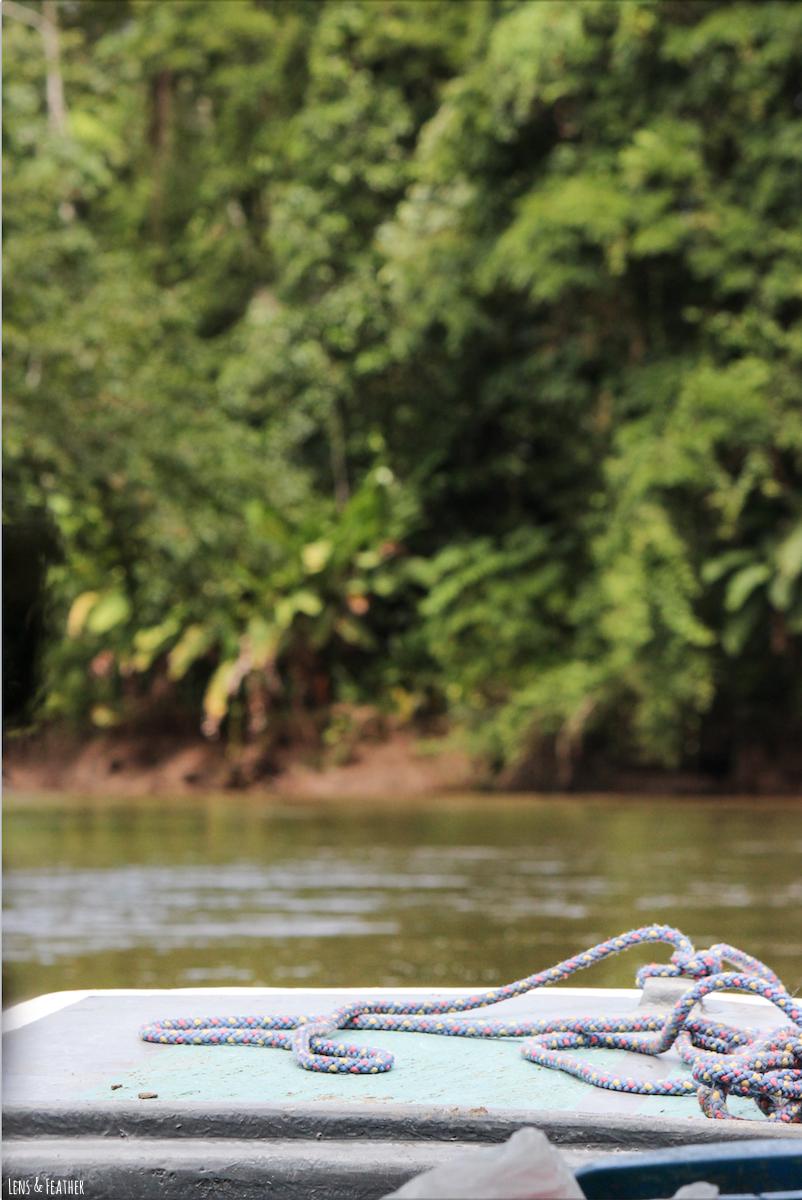 Entdeckungsfahrt auf dem Tortuguero Kanal Costa Rica