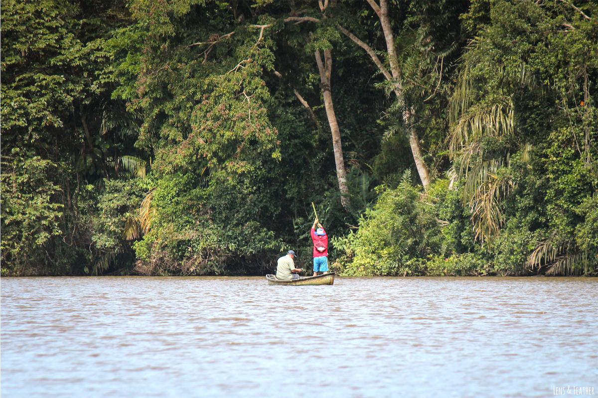 Fischer auf dem Tortuguero Kanal Costa Rica