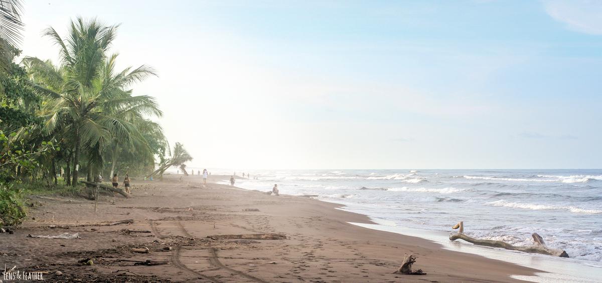 Strand von Tortuguero Costa Rica