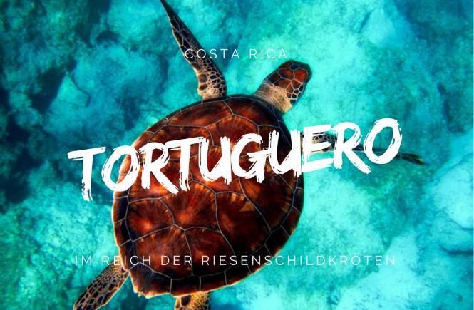 Tortuguero - Im Reich der Riesenschildkröten | Foto credit: Pixabay.com