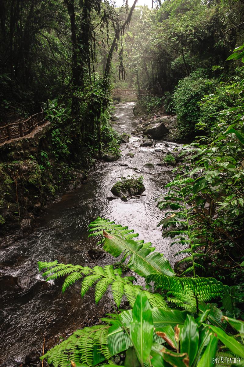 Die La Paz Wasserfallgärten in Costa Rica